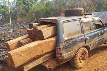Stopping Logging